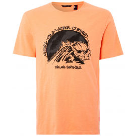 O'Neill LM COLD WATER CLASSIC T-SHIRT