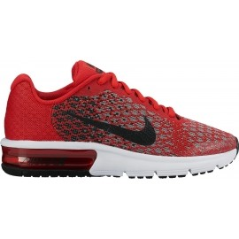 Nike 869AIR MAX SEQUENT 2 (GS)